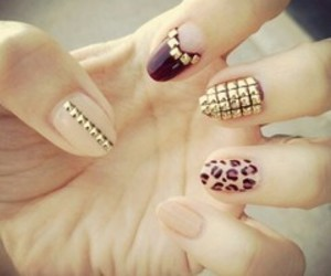 leopard, nails, and print image