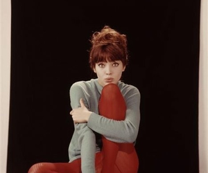 anna karina, vintage, and red image