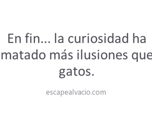 curiosidad and frases image
