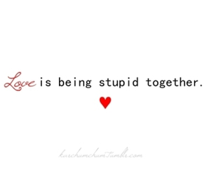 stupid, text, and together image