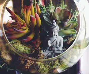 Buddha, plants, and peace image