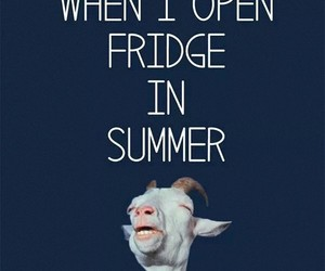 cold, fridge, and funny image