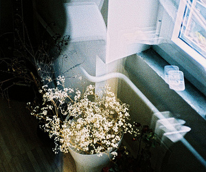 flowers, cute, and grunge image