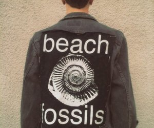 indie and beach fossils image