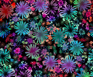 wallpaper, flowers, and backgrounds image