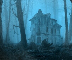house, forest, and abandoned image