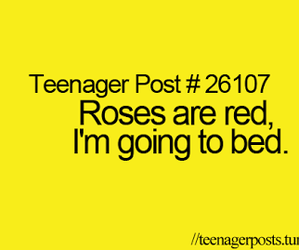 bed, roses, and funny image