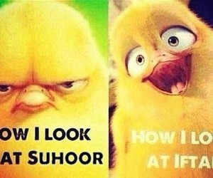 iftar, funny, and suhoor image