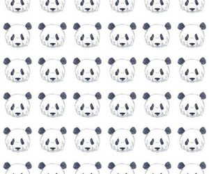 background, iphone, and panda image