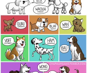 dog, language, and woof image
