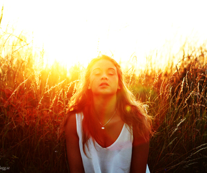 backlight, field, and light image