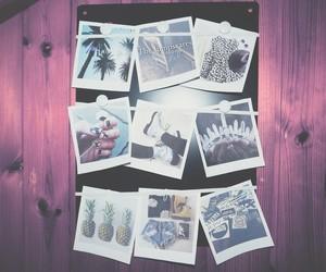 photography, photos, and polaroid image