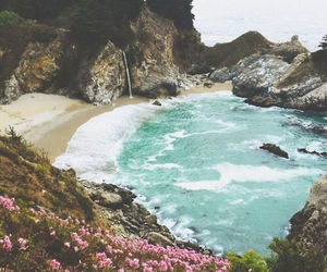 flowers, beach, and sea image