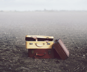 suitcase, field, and photography image