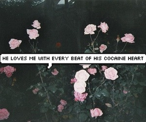 grunge, lana del rey, and flowers image
