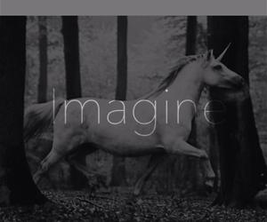free, imagine, and happy image