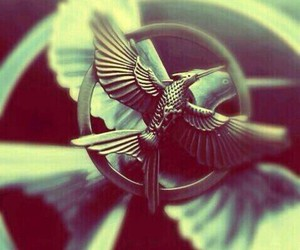 pin, mockingjay, and the hunger games image