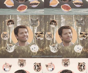 dean winchester, pie, and supernatural image