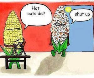 funny, corn, and popcorn image