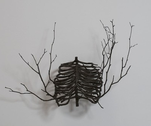 branches, art, and ribs image