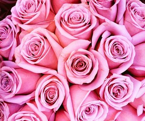 bouquet, flowers, and pink flowers image