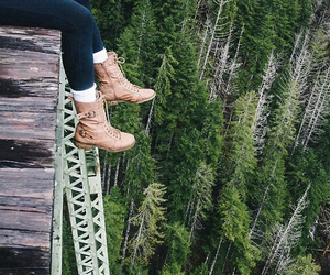 nature, tree, and shoes image