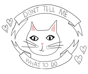 cat, quotes, and tumblr image