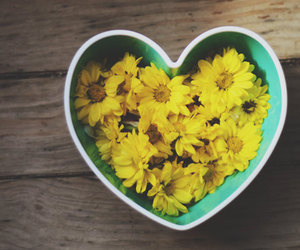 flowers, green, and heart image
