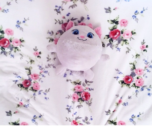 flowers, pink, and cat image