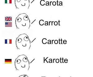 carrot, funny, and diferencias image