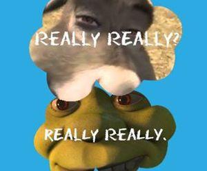 shrek, donkey, and funny image