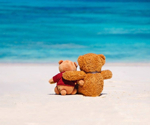 adorable, beach, and funny image