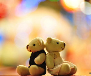 cute, bear, and photography image