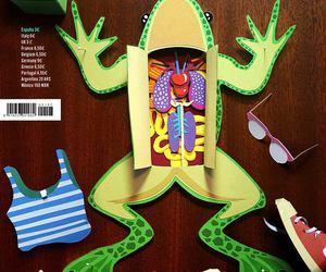 anatomy, frog, and inspiration image