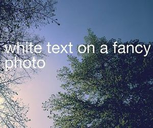 text image