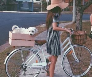 dog, girl, and bike image