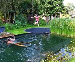pool, trampoline, and summer image