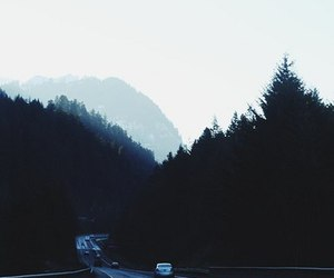 car, forest, and landscape image