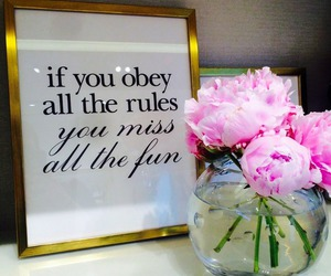 fun, rules, and quote image