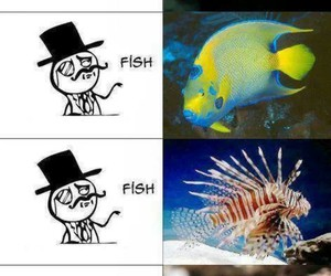 comic, fish, and funny image