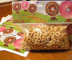 cereal, diy, and donut image