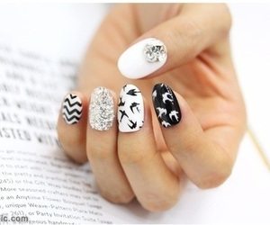 nails, bird, and black image