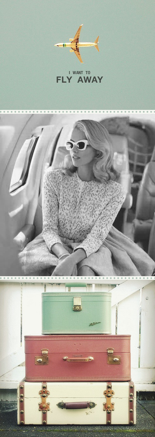 travel, vintage, and fly image