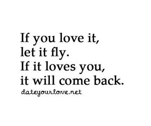 love, fly, and quotes image