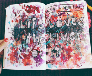 amazing, photography, and wreck this journal image