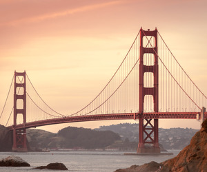 bridge, san francisco, and nature image