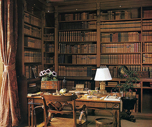 addict, bookcase, and bibliotheque image