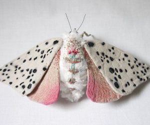 butterfly, pink, and beautiful image