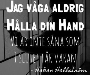 hh, håkan hellström, and sverige image