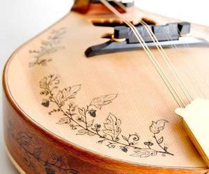 mandolin image